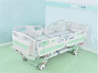 China Multifunctional electric turn over bed with scale function factory